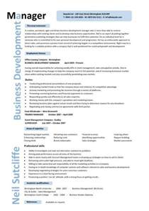 Senior Accountant Cover Letter International Business Cv International Business Development Manager