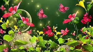 Spring Butterfly Desktop HD Wallpapers 7719 - HD ...