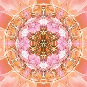 Flower of Life Mandala 18 - Artwork by Atmara/New World ...