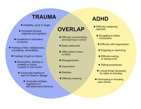 Diagram Of Adhd by Adhd Attention Deficit Hyperactivity Disorder Adhd