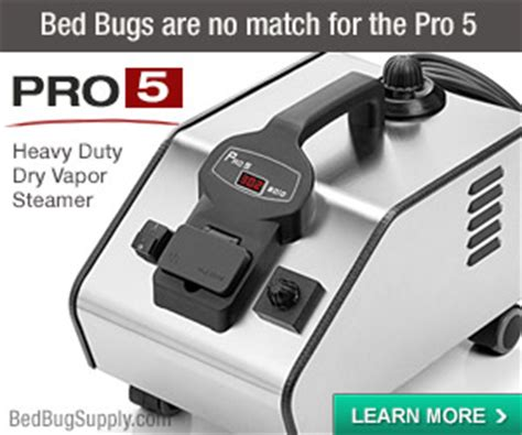 How To Kill Bed Bugs Using Steam (faqs