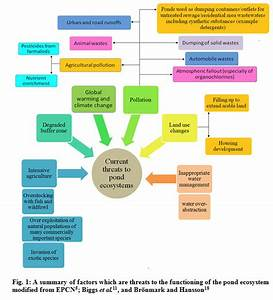How To Write An Introduction For An Essay Structure Of Socio Economic Geography Socio Economic