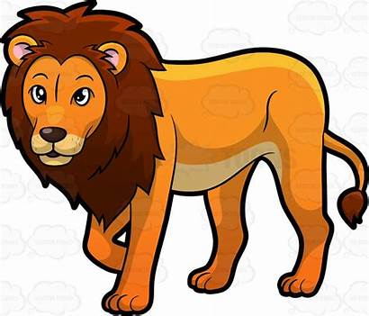 Lion Clipart Cartoon Male Clip Zoo Proud