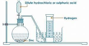 Diagram For Hydrogen Gas : laboratory preparation of hydrogen gas lets learn nepal ~ A.2002-acura-tl-radio.info Haus und Dekorationen