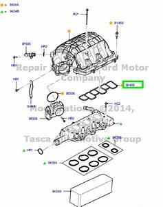 New Oem Engine Intake Manifold Gasket 3 5l    3 7l V6 Ford