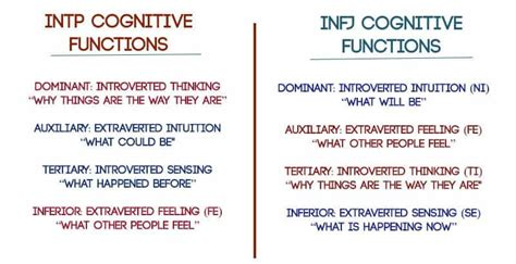 myers briggs  relationships  infjs  intps fall    psychology junkie