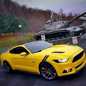 Yellow Pony. Ford Mustang 5.0 image 2018 | Mustang cars, Yellow mustang, Mustang