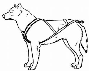 Diy Sled Pulling Harness | Get Free Image About Wiring Diagram
