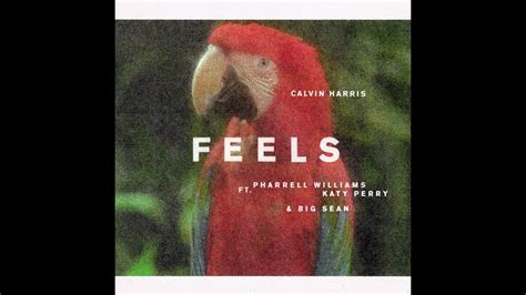Calvin Harris  Feels (lyrics) Youtube