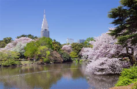 shinjuku gyoen national garden file shinjuku gyoen national garden 3 jpg