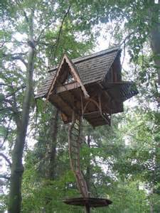 Photos extreme tree houses gallery