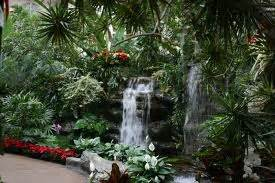 picture collection nature garden pics