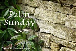 Palm Sunday | Malcolm Guite