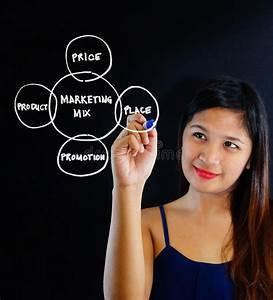 Woman Making Marketing Plan Stock Photo - Image: 48097042