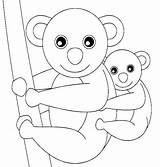 Koala Coloring Bear Baby Pages Colorluna Bears Bird Luna sketch template
