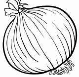 Coloring Onion Pages Popular sketch template