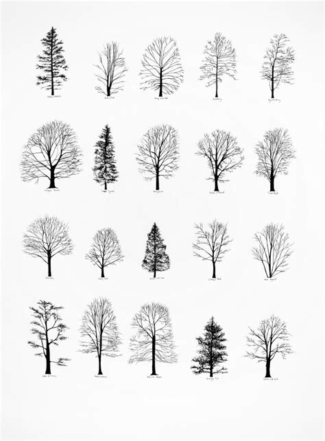 nice tree tattoo designs  ideas  men