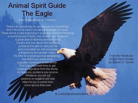 eagle spirit animal meaning inspiration magick