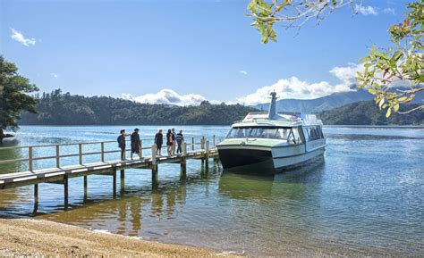 Picton Boat Trips by Mail Boat Tours Marlborough Sounds Boating Picton Nz