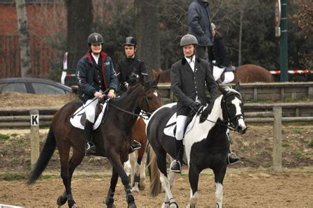siege ucpa bayard equitation