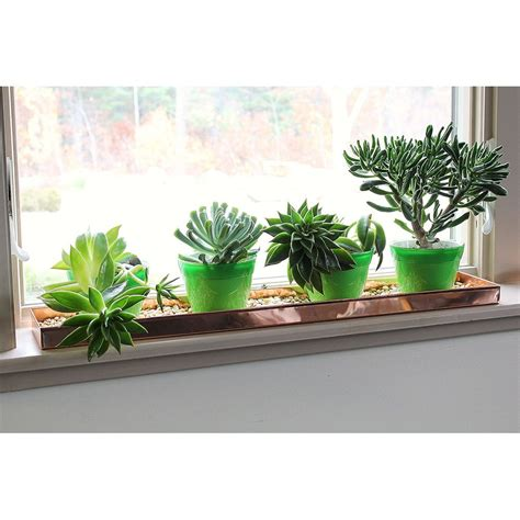 Plants For Windowsill by Achla Designs Copper Rectangular Windowsill Plant