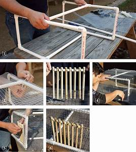 Build Your Own Pigeon Trap