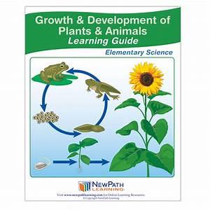 Growth  U0026 Development Of Plants  U0026 Animals Learning Guide
