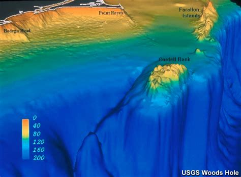Cordell Bank NMS: Computer Generated 3D Bathymetry