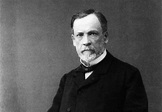 30 Fascinating And Interesting Facts About Louis Pasteur ...