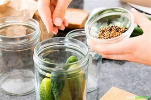 Spülmaschine Ohne Salz : gurken selbst einlegen rezepte f r essig salz gew rzgurken ~ Eleganceandgraceweddings.com Haus und Dekorationen