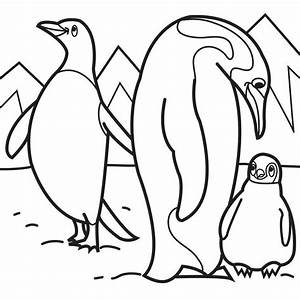 free coloring pages of penguins - penguin printable coloring pages coloring home