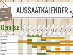 Gemüse Anbauen Plan : aussaatkalender download chip ~ Watch28wear.com Haus und Dekorationen