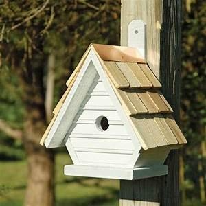 Come costruire casette per uccelli Casette per giardino Casette per uccelli: consigli per