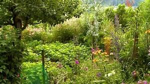 Gartengestaltung Unter Bäumen : mit pflanzen gartenv geln lebensraum bieten ratgeber garten ~ Yasmunasinghe.com Haus und Dekorationen