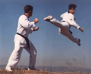 Front Kick Tae Kwon Do Martial Arts