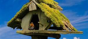 Vogelhaus Bauen Mit Kindern Anleitung : vogelhaus zum selber bauen simple vogelhaus selber bauen with vogelhaus zum selber bauen ~ Watch28wear.com Haus und Dekorationen