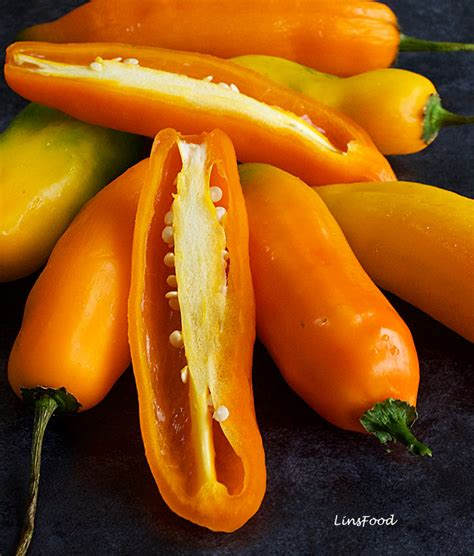 aji amarillo aji amarillo the peruvian yellow chilli pepper
