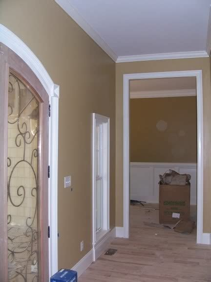 11 best images about sherwin williams camelback on