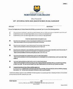 guardianship forms 9 free pdf word free premium With legal guardianship documents free