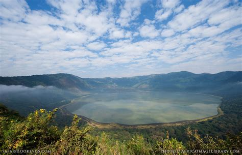 Ngorongoro Photos  Images & Pictures