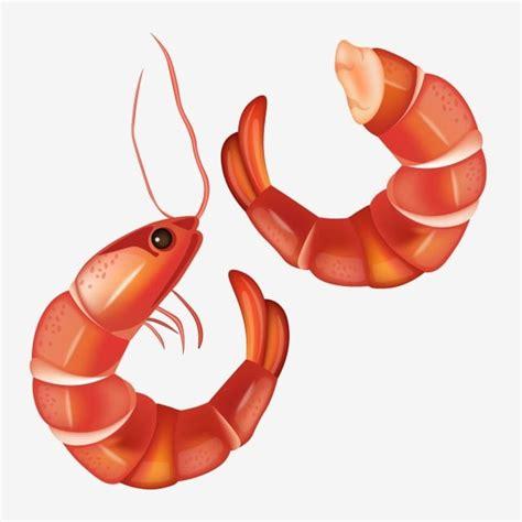 cartoon shrimp png vector psd  clipart