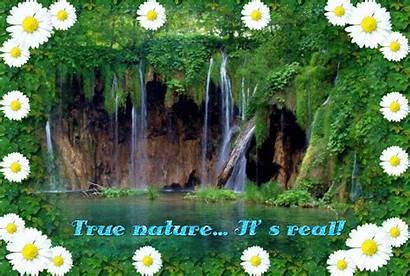 Nature True Animals Wallpapers Background Fanpop Picserio
