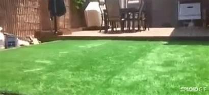 Pool Hidden Backyard Grass Underneath Yard There