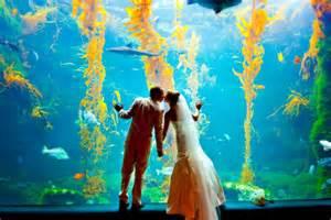 traditional engagement rings birch aquarium at scripps exquisite weddings