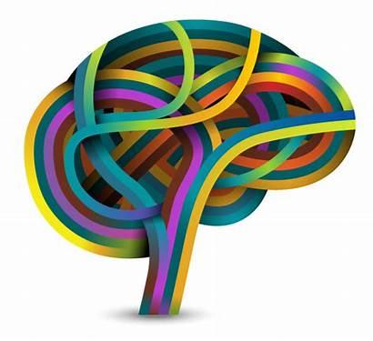 Brain Learning Based Mind Adolescents Strategies Teaching