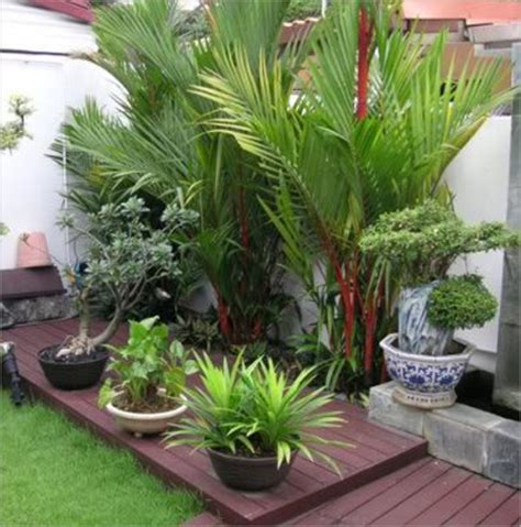 terrace garden design india terrace garden design terrace garden design exporter manufacturer supplier pune india