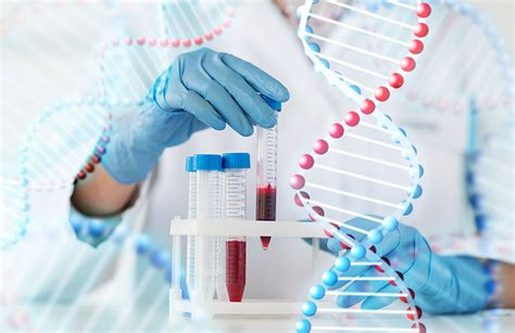 test genetica genetica medica gruppo pavanello sanit 224