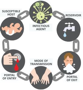 chain  infection activity breaking  chain