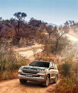 Ntt Toyota Delmas
