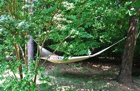 Hammock Between Trees by Hammock Between Trees Outdoor Bliss